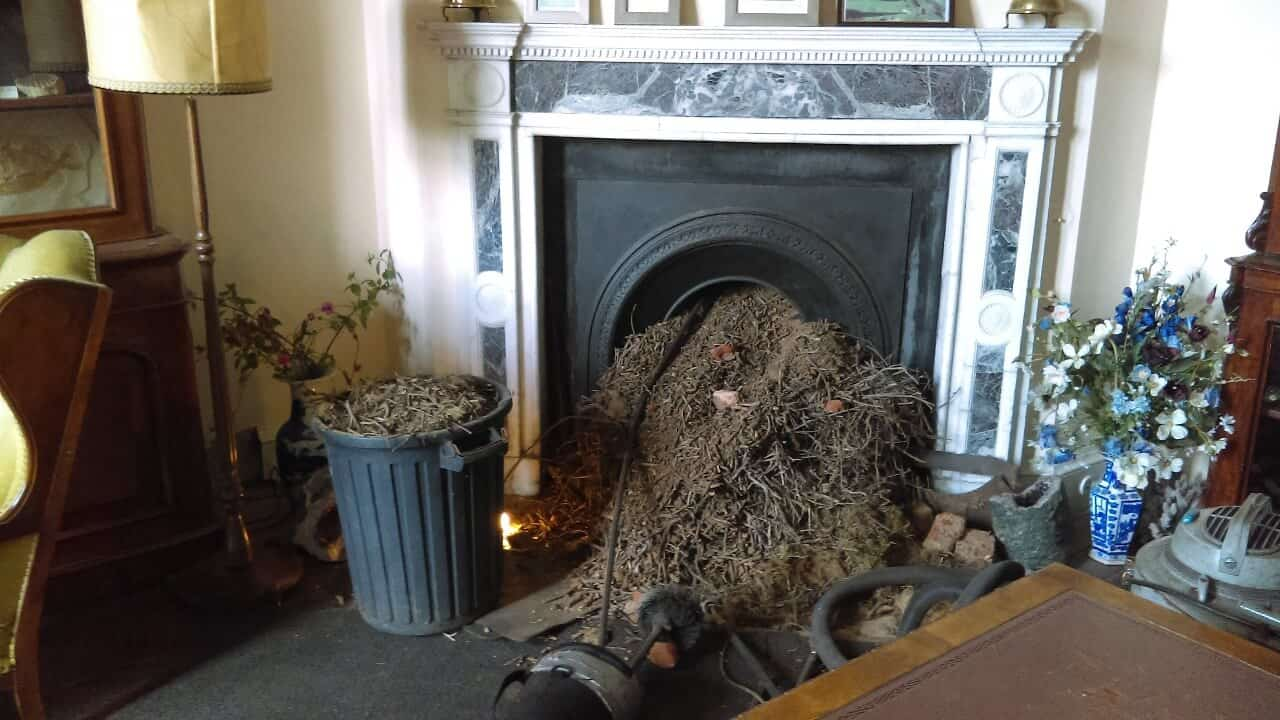 Chimney Sweep Cardiff Amp South Wales Certified Chimney Sweeps